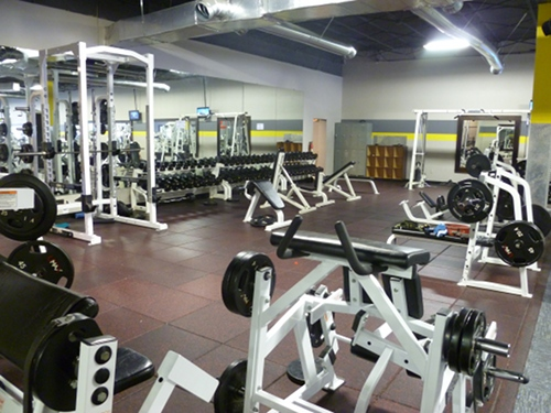 Free weights: squat rack, bench press, dumbbells, etc.